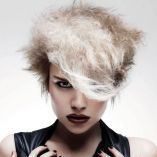 Collections spring/summer 2009. Fiery, fast, effective Eighties. Hair cites punk, rock, new wave.