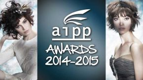 Discover the Winners of the 2014-2015 AIPP Awards!