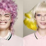 A Year of colour by Hooker & Young