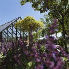 Davines Scientific Garden